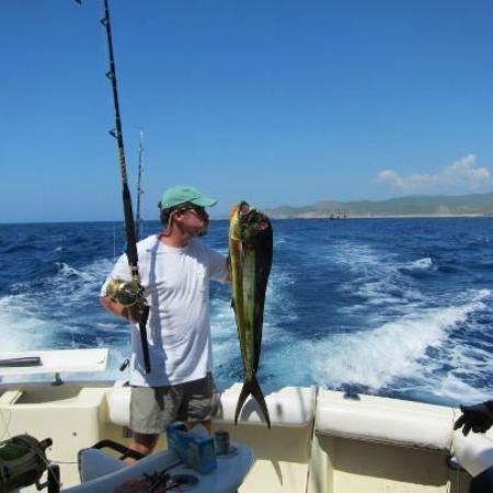 Poncho the sea lion picture of winner 7 sport fishing in for Fishing in cabo