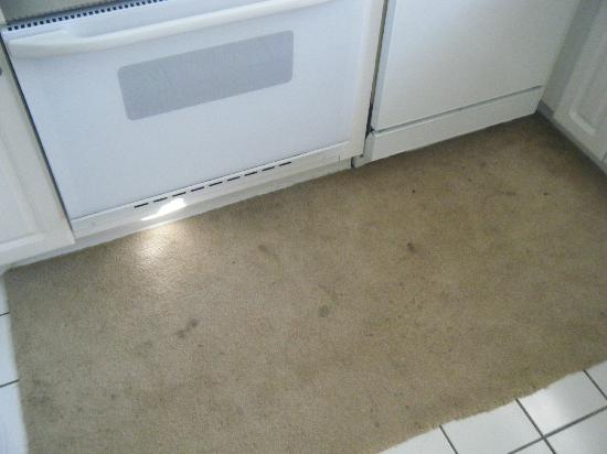 Myrtlewood Villas: stained rug in front of oven