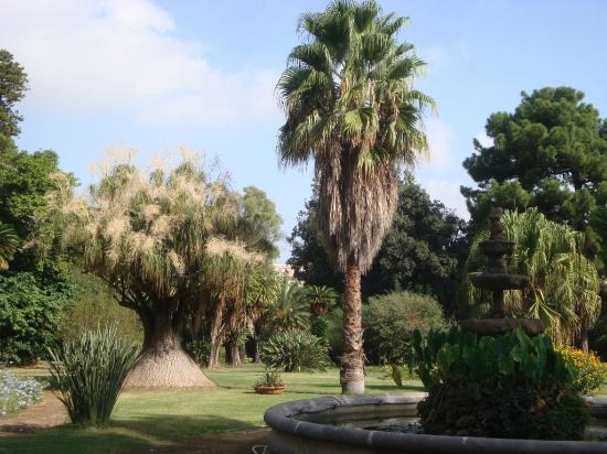 Villa Malfitano: giardino