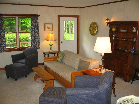 Stowe Cabins in the Woods: living room cabin #10