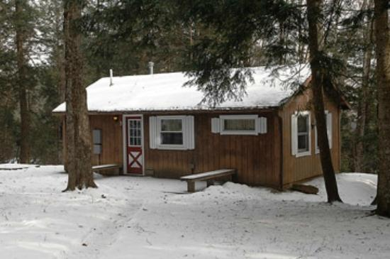 Stowe Cabins in the Woods: Cabin #3