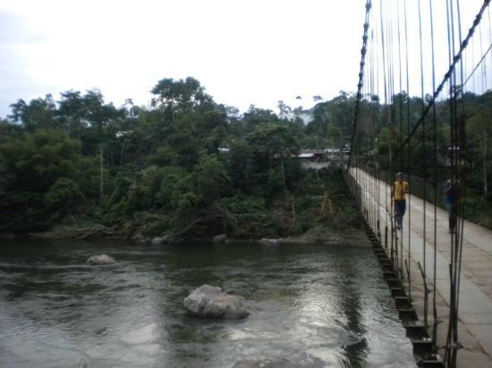 Suchipakari Amazon Rainforest Ecolodge : Pont emprunté pour parvenir au site de l'hôtel
