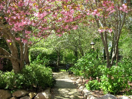 Palmer House Inn: Pink blooms in the garden.
