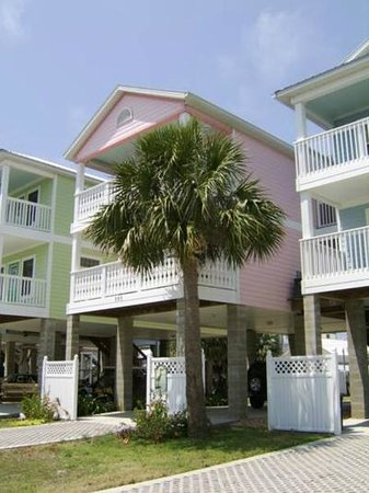 Seashells in Cedar Key Florida: Seashells Cottage
