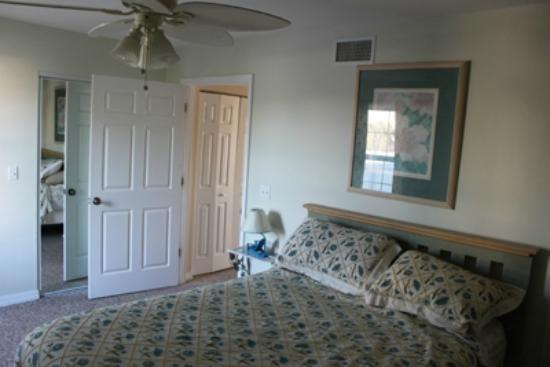 Seashells in Cedar Key Florida: Lower Bedroom