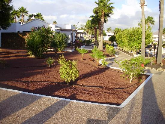 Crazy golf picture of jardines del sol playa blanca for Jardines del sol