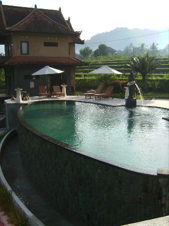 Tanto Villa Guesthouse: La piscine
