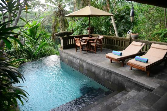 Bidadari Private Villas & Retreat 사진