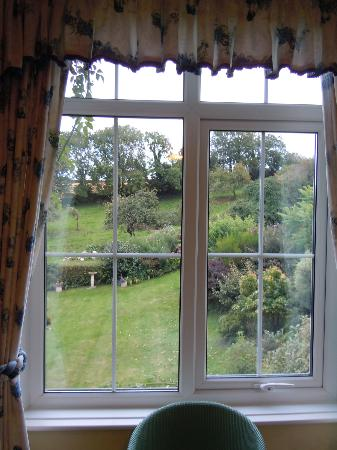 Youngcombe Farm: View from daughters room