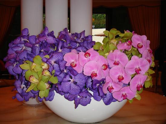 Wynn Las Vegas: Orchids in lobby