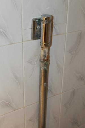 Anezi Tower Hotel : Chasse des toilettes