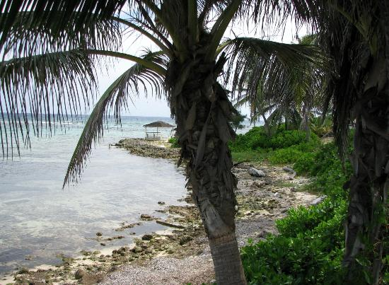 Cayman Islands Department of Tourism: Beautiful lunch spot.