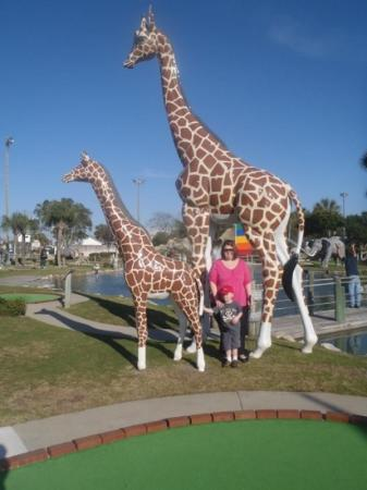 Coconut Creek Family Fun Park: My son and I posing with the giraffes!