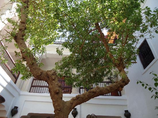 Riad Aldiana: Vue sur le haut du patio