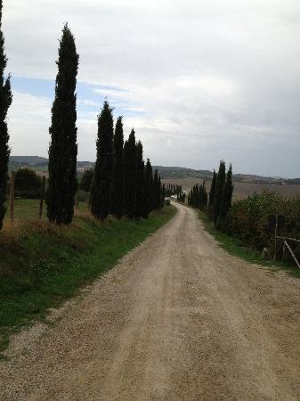 Villa Corsanello: View from the road