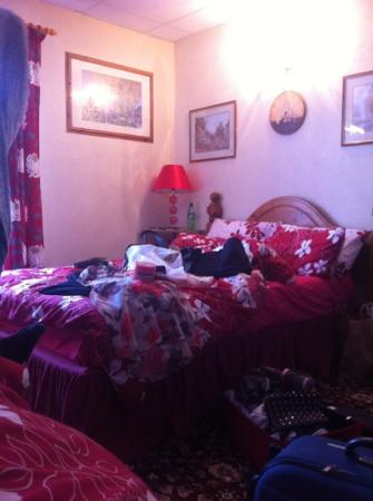 Terry's Guest House: decore of the room.(minus the mess) comfortable bed and very warm room due to heater. cosy room!