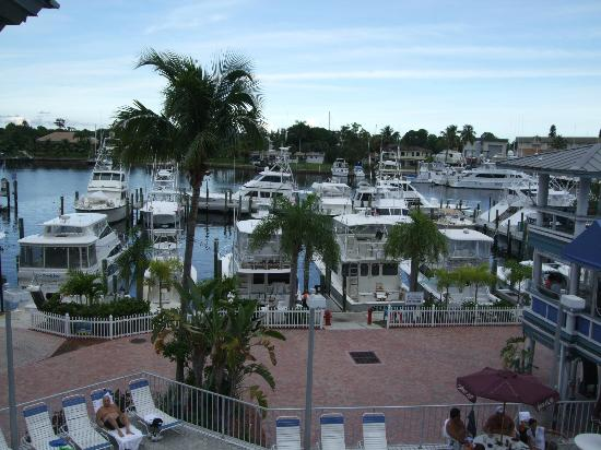 Pirate's Cove Resort and Marina : The balcony view