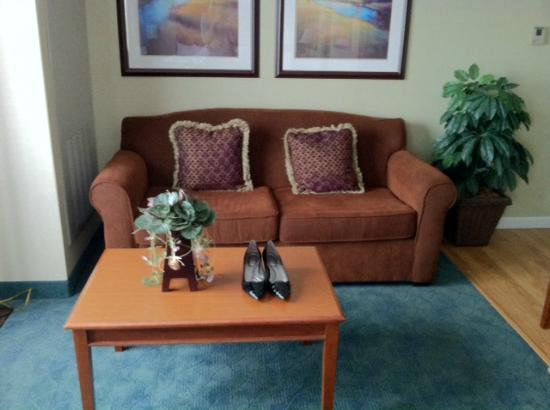 Homewood Suites Holyoke-Springfield/North : Couch