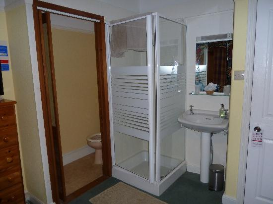 Avondale Guest House: the shower and basin in the room