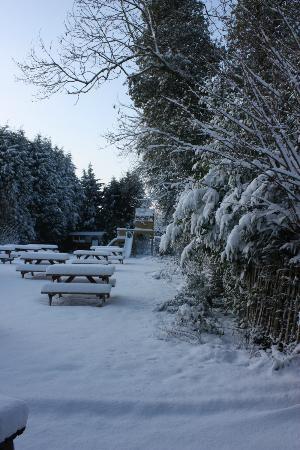 The Greyhound Inn: Garden in the snow