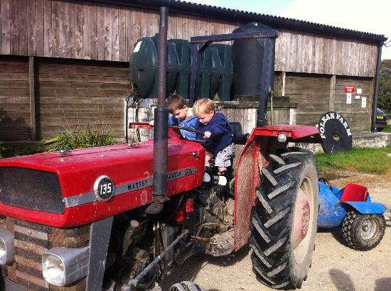 Polean Farm Cottages: Kids playing on the tractor