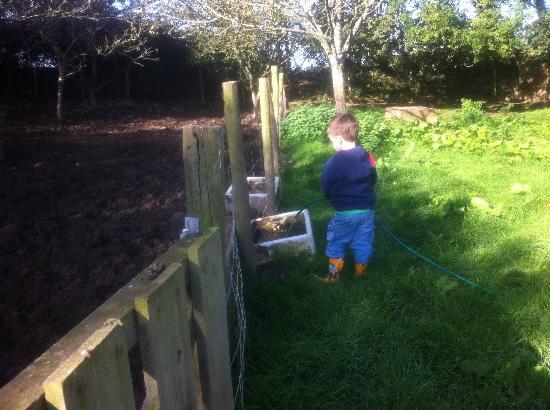 Polean Farm Cottages: Filling the water troughs