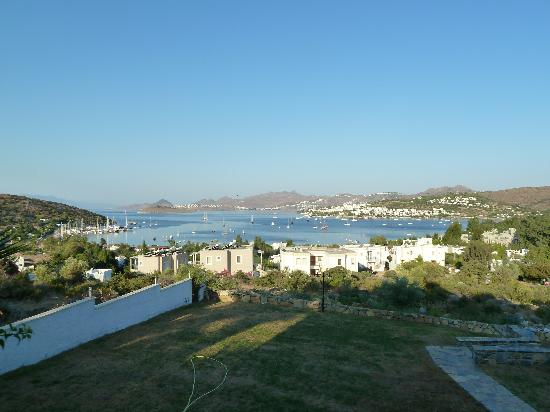 Sestra Apartments: This is your view wow !!