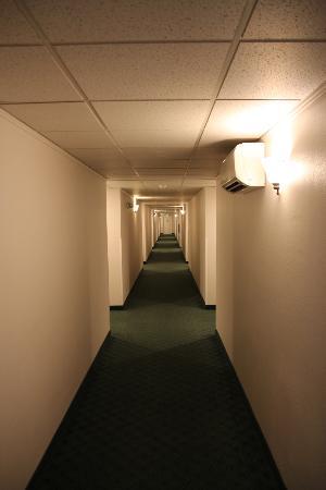 La Quinta Inn Everett: Flur