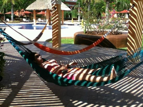 The Royal Haciendas All Suites Resort & Spa: HAMMOCKS AT THE POOL
