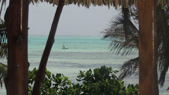 Casa Del Mar Hotel Jambiani : dalla camera.....