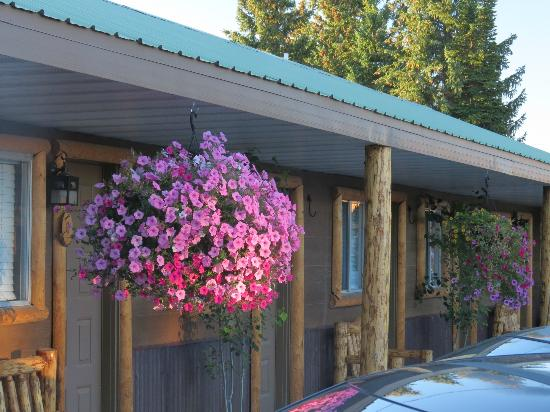 Evergreen Motel: Beautiful hanging baskets at the Evergreen