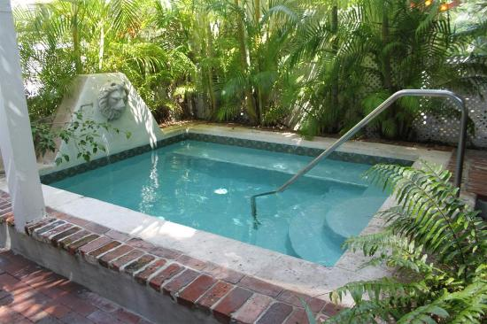 The dipping pool in the rear tropical garden Picture of Artist