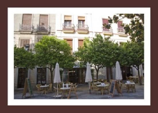 Restaurante Terraza La Mejorana: La terraza