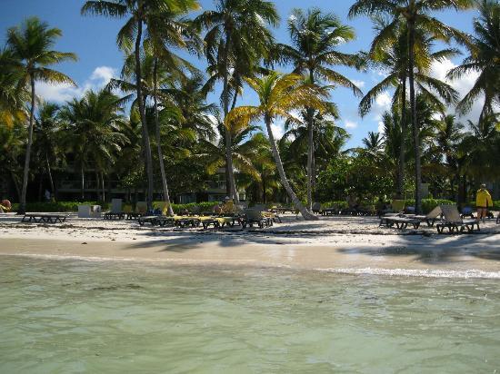 Barcelo Bavaro Palace Deluxe: Beach