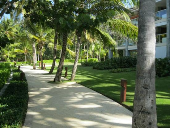Barcelo Bavaro Palace: Pathway in resort