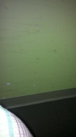 Ibis Budget Hotel Sydney Airport: dirty walls