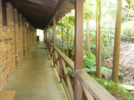 Avoca Beach Hotel & Resort : Walkway to Motel Room