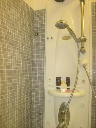 Virgilio Grand Hotel: Shower