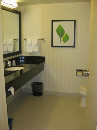 Fairfield Inn & Suites Toronto Mississauga: Bathroom, very roomy!