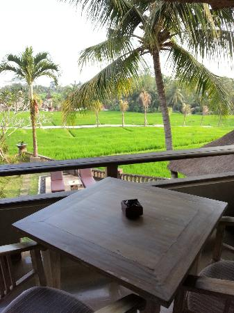 瓦卡迪尤美度假村照片