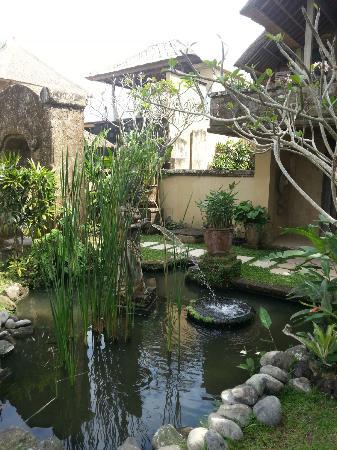 Wapa di Ume Resort and Spa: Fish pond