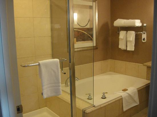 Executive Inn & Suites: The toilet is in a small room with a door on it's own.