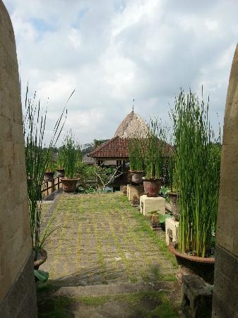 Wapa di Ume Resort and Spa: Paddy Area