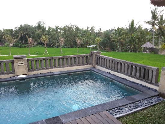 Wapa di Ume Resort and Spa: Terrace Villa Pool