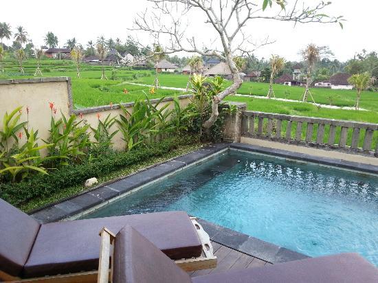 Wapa di Ume Resort and Spa: Terrance Villa Pool