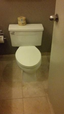 The Westin Cincinnati: Toilet