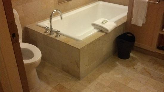 Westin St. Louis: Bathtub