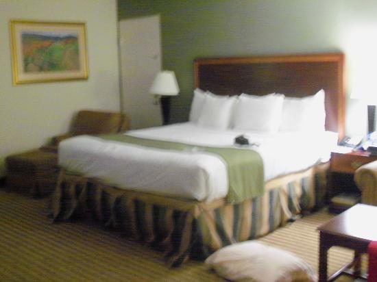 Clarion Inn: King size bed