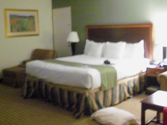 弗雷德里克斯堡北部假日飯店照片