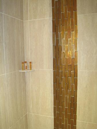 Turtle Creek Casino & Hotel: Pretty shower but grout stained on floor